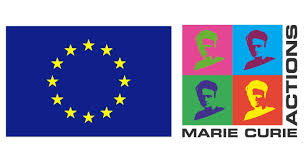 Image result for marie curie fellowship